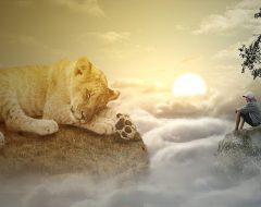 К чему снится лев?