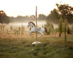 К чему снится лошадь?