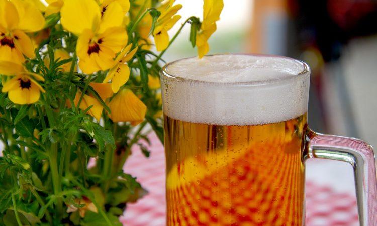 К чему снится пиво?